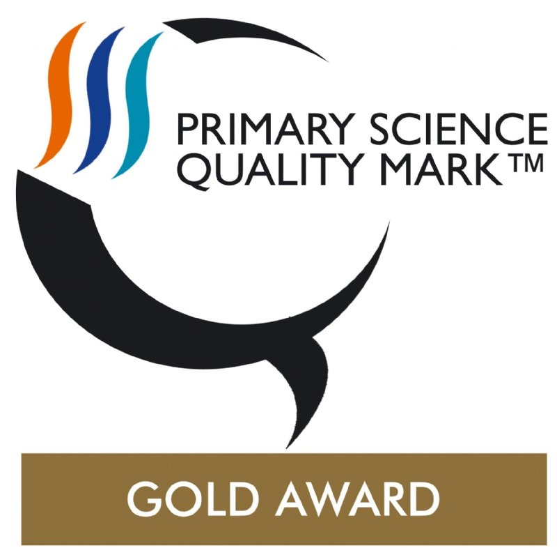 Image result for primary science quality mark gold award